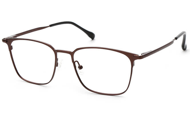 Noah Metal Rectangle Eyeglasses, Silver;brown