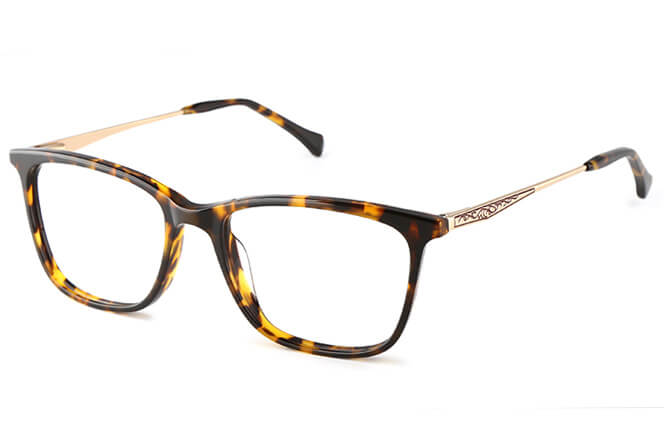 Abell rectangle Eyeglasses, Tortoiseshell;red